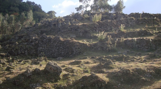 Recent Archaeological Findings from South Ethiopia