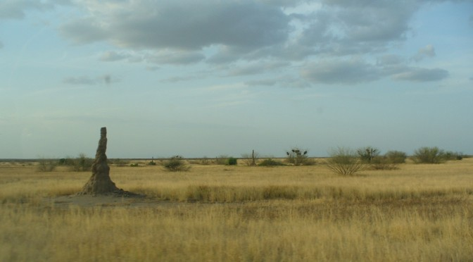 Stones of remembrance and forgetting: Gravestones in a South-Western Ethiopian landscape