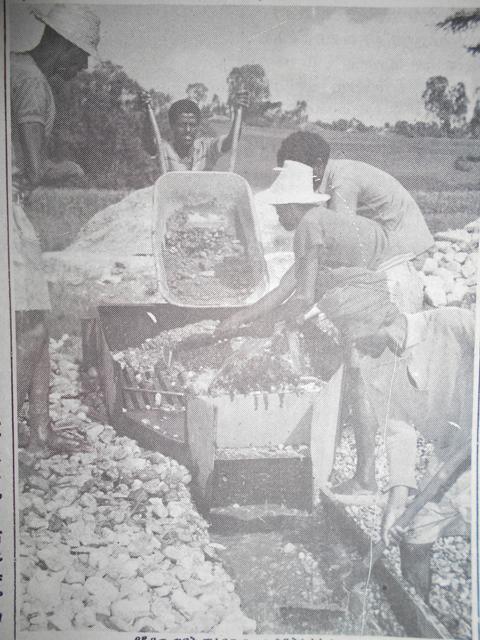 TERRAIN/FIELDWORK: A History of Mining in Wallaga | UN ŒIL